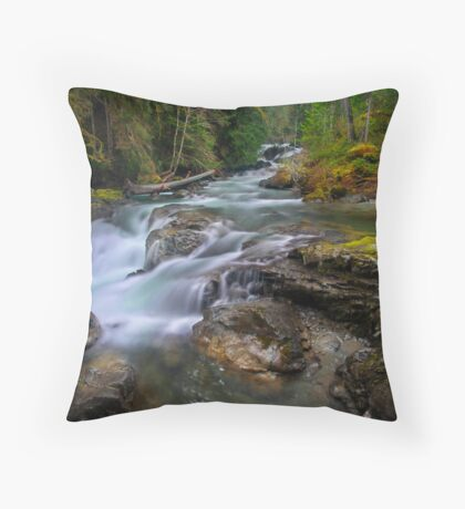 Eloquence of Nature Throw Pillow