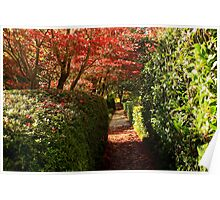 The Walkway Through the Gardens Poster