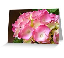 Gifted Pink Greeting Card