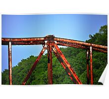 Rusted Bridge with Nest Poster