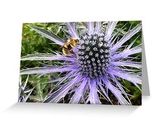 Sea Holly - Blue Glitter Greeting Card