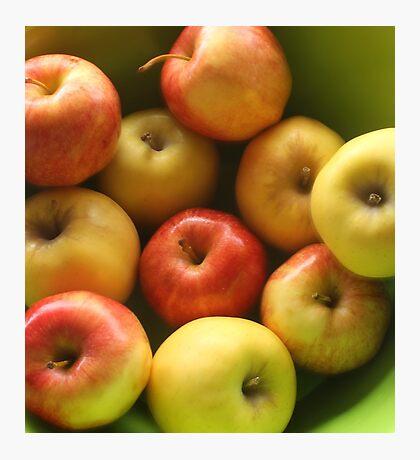 Ten Apples (still life) Photographic Print