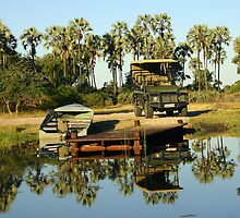 Components of an Okavango Delta Safari by jozi1