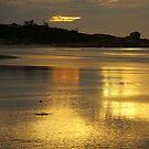 diamond island, redbill beach. eastcoast, tasmania by tim buckley | bodhiimages