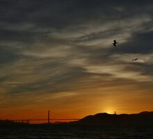Golden Gate Sunset by fototaker