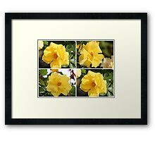Collage of Four Yellow Roses Framed Print