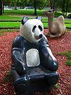Sandbox Panda by Nevermind the Camera Photography