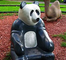 Sandbox Panda by Nevermind the Camera Photography