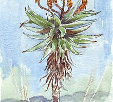 Aloe ferox painting 2 by Maree Clarkson