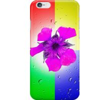 Quadrant Colours  iPhone Case/Skin