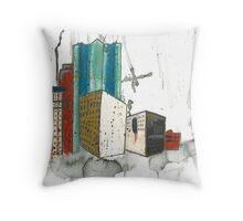 20120219B Throw Pillow