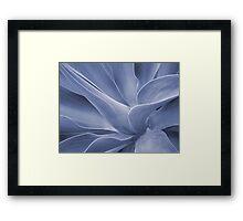 Agave in Blue Framed Print