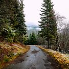 Road In The Clouds by Charles & Patricia   Harkins ~ Picture Oregon
