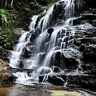 Sylvia Falls - Valley of the Waters NSW Australia by Bev Woodman