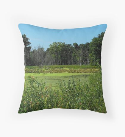Escape from brainwashed minds and pollution...Make a home where love is there to stay...Peace and happiness in every day..another world where freedom waits..Into the void Throw Pillow