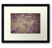 Tiempo de primavera Framed Print