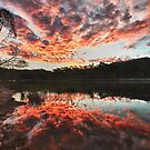 Dunns Swamp Sunset by Ian Berry