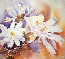 Magnolia Stellata by Ruth S Harris