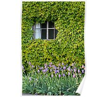 Cottage Window and Irises Poster