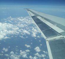 30,000 Feet High by lighthousegrphx