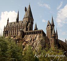 Harry Potter's Castle by kfurniz