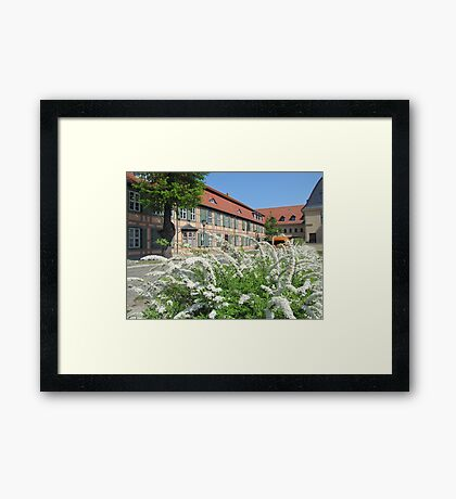 History and Nature Framed Print