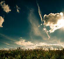 Dramatic Sky by schwarz