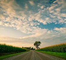 Country Road by schwarz