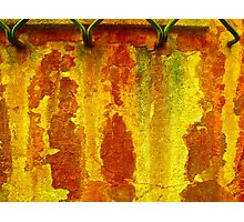 """""""Remnants Of Red, Rust and Gold"""" Photographic Print"""
