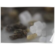 Salt and Pepper Macro Poster