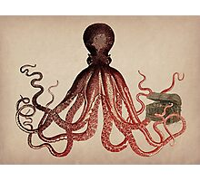 Vintage Octopus on Aged Parchment Photographic Print
