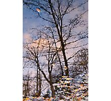 Autumn Leaves and Reflections on Wilket Creek at Sunset Photographic Print