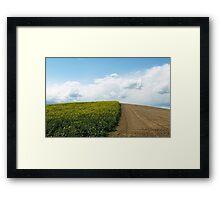Bicolor Field Framed Print
