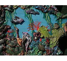 Trilobite & Sprayed Fish Photographic Print