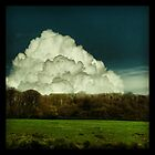 Big Cloud by Mary Ann Reilly