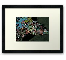 Red Coral Fin Framed Print