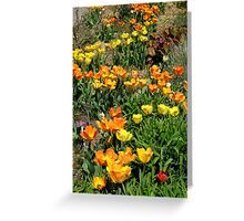 So great to see you again! Greeting Card