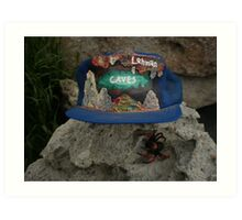 Lehman Caves / fire painting on cap artwork \ and Wolf Spider Art Print