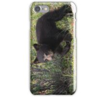 Bear Cub iPhone Case/Skin