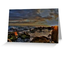 Sunrise Fairy Bower-Manly Greeting Card