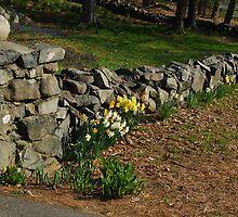 Floral Stonewall by RoyceRocks
