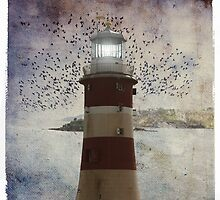 At the Point by Mary Ann Reilly