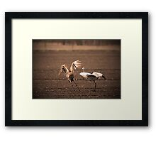I Told You Stop Following Me So Close!! Framed Print
