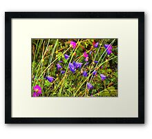 Harebells and Geraniums textured Framed Print