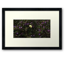 Yellow Butterfly In Flight Framed Print