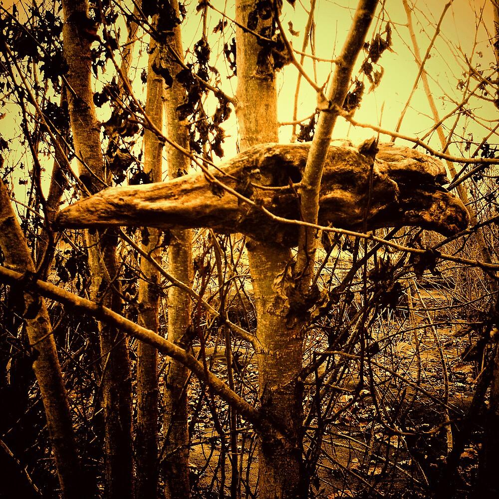 Nevermore by KeriFriedman