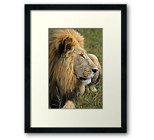 Surveying his realm Framed Print