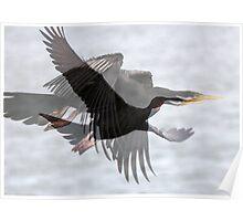 Black Cormorant Fantasy Poster