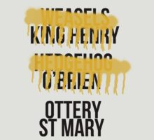 Ottery St Mary by thefinalproblem