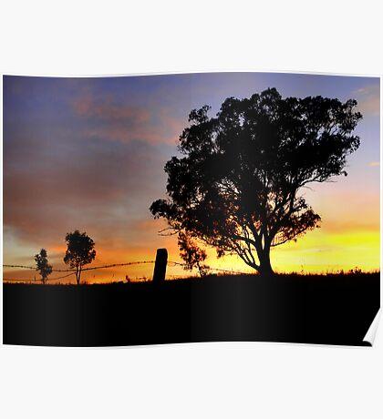 Ulandra Reserve Sunrise #1 Poster